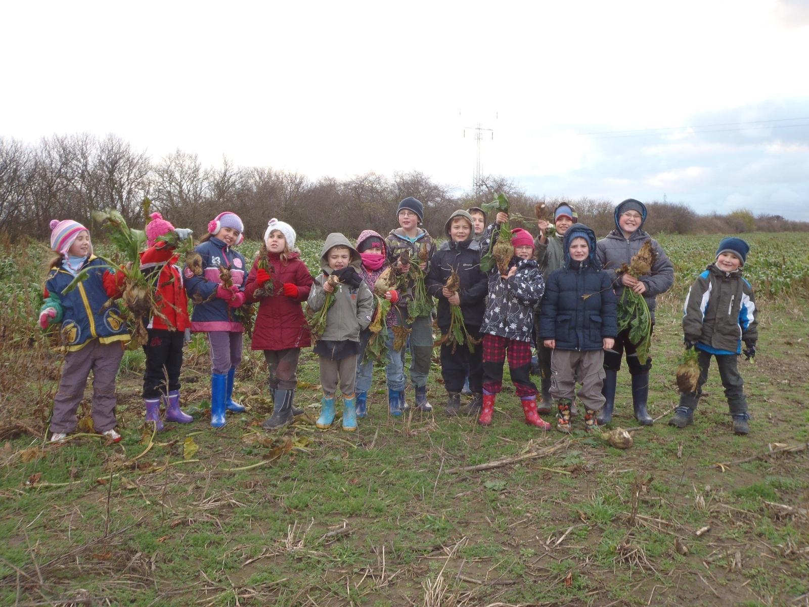 Kroužek Mladý farmář II – pěstitel – středisko Lázně Toušeň – žáci Základní školy Lázně Toušeň